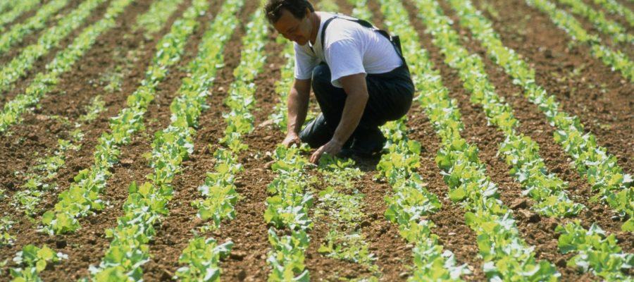 Artimeca matériel agricole durable